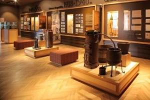 Tarptautine-muzieju-diena-apsilankyti-kviecia-Stumbro-muziejus!_blogpost_full